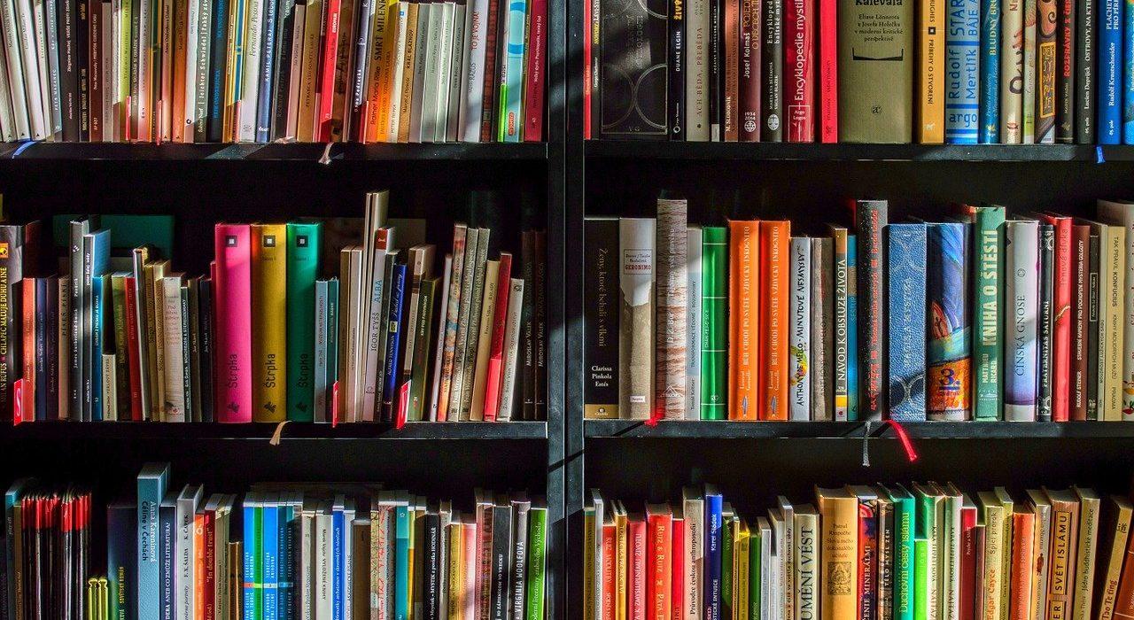 des livres d'occasion pas cher que l'on peut acheter en ligne